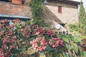 Paciano, Umbria Tuscany Review
