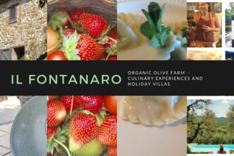 Organic Holiday in Italy