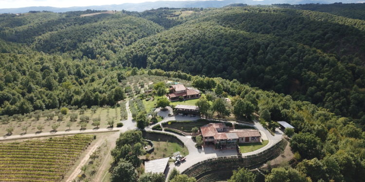 an Umbrian wine tour